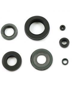 Engine Oil Seal Kit CB750 CB900